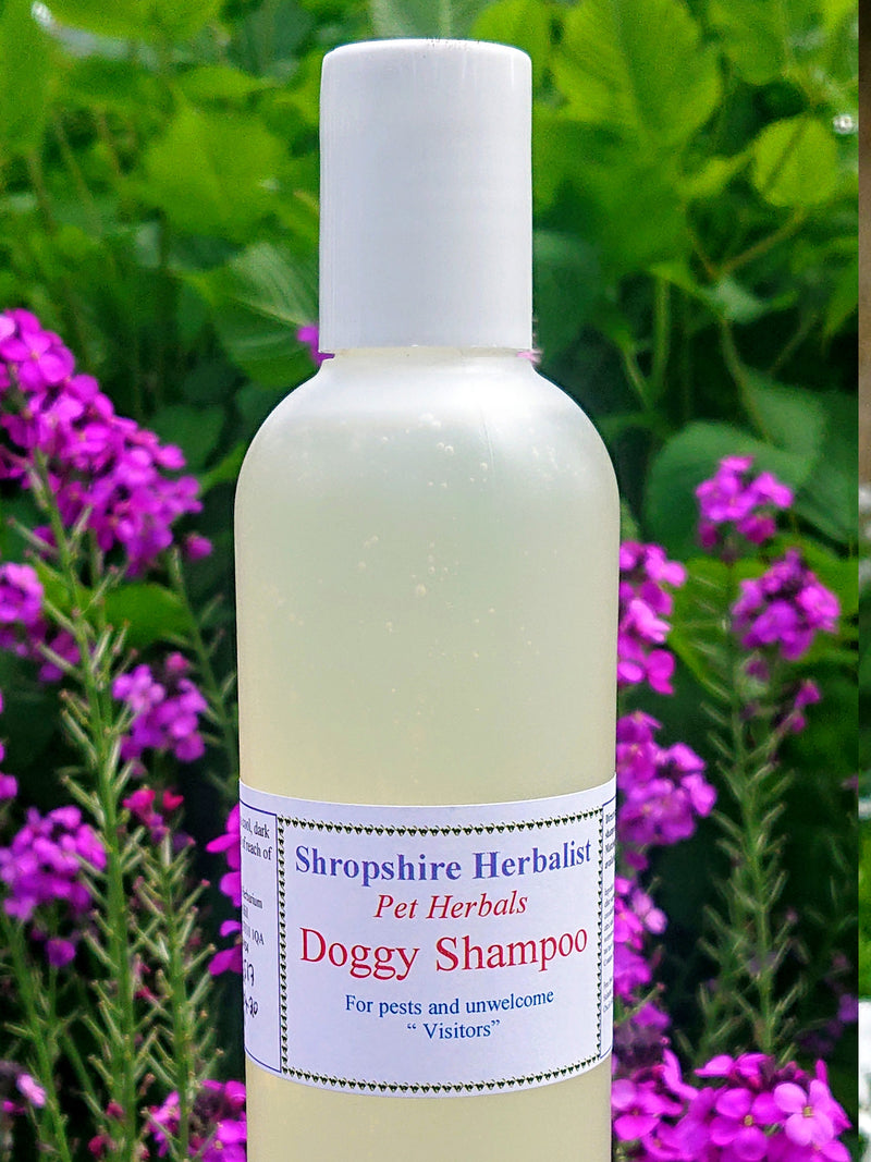 Natural Doggy Shampoo