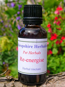 Re-Energise Natural Pet Oswestry Herbarium