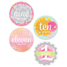 Baby Girl Monthly Sticker Set