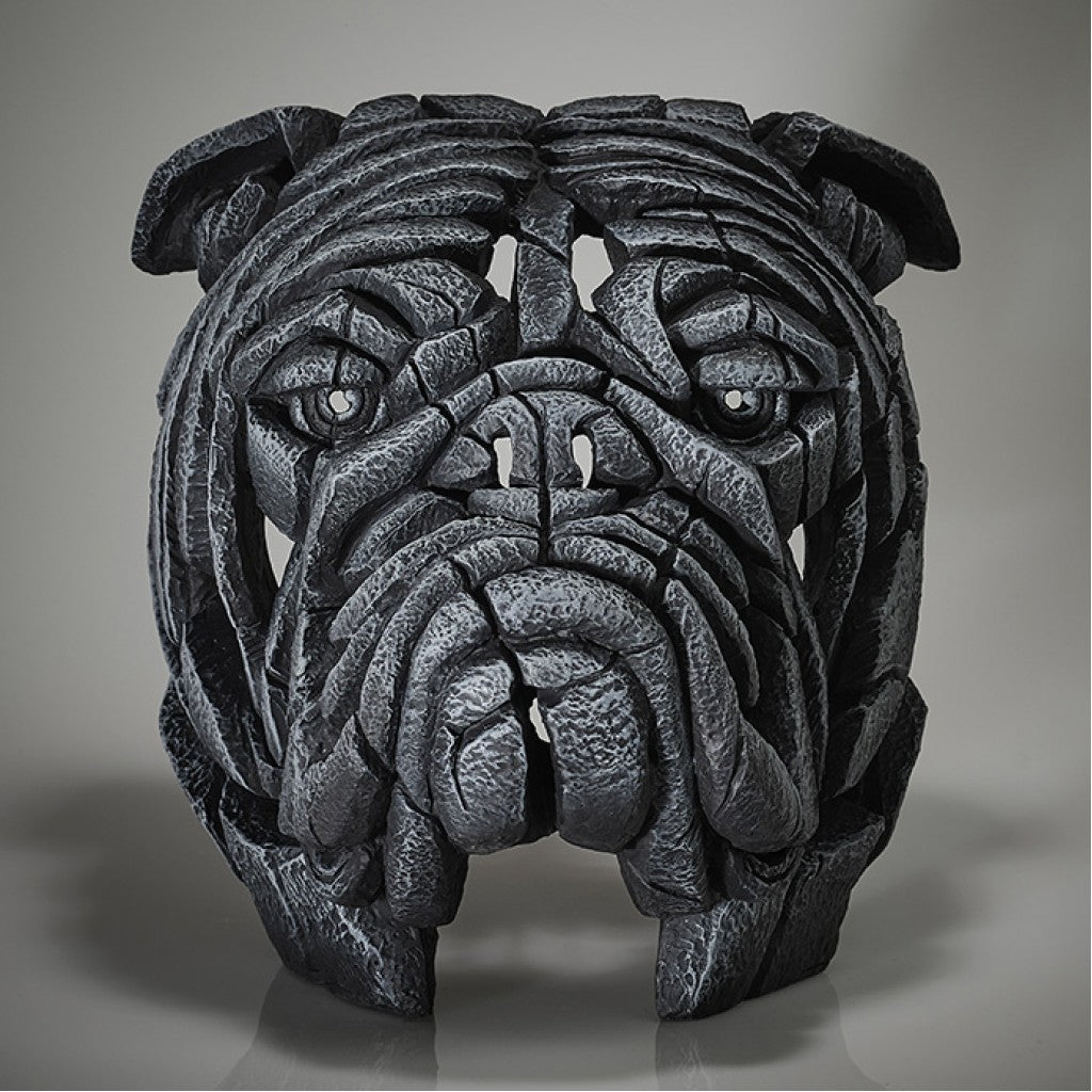 Edge Sculpture Bulldog Bust - Early Grey Signed Limited Edition by Matt Buckley PreOrder for June Delivery