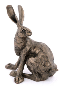 Humphrey Hare by Paul Jenkins