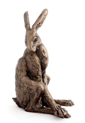 Hector Hare by Paul Jenkins