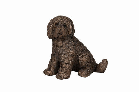 Shorty Labradoodle by Adrian Tinsley