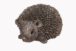 Squeak Junior Hedgehog by Thomas Meadows