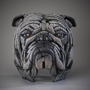 Edge Sculpture Bulldog Bust - White