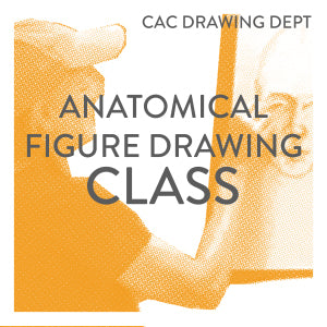 Anatomical Figure Drawing