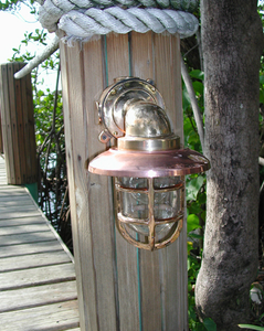 Hydra™ 90 Degree Passageway Light - Bronze with Copper Hood