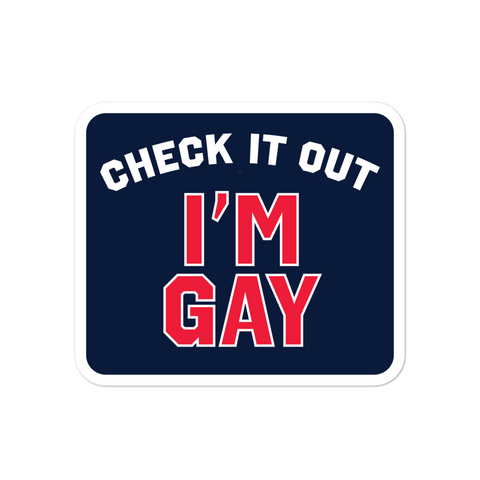Dimension 20 Fantasy High Check It Out I'm Gay Sticker