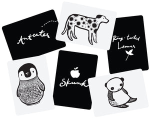Black & White Art Cards for Baby