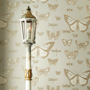 Cole & Son Wallpaper | Butterflies & Dragonflies 103/15064