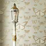 Cole & Son Wallpaper | Butterflies & Dragonflies 103/15066