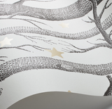 Cole & Son Wallpaper | Woods & Stars 103/11053