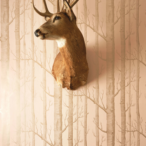 Cole & Son Wallpaper | Woods 103/5023