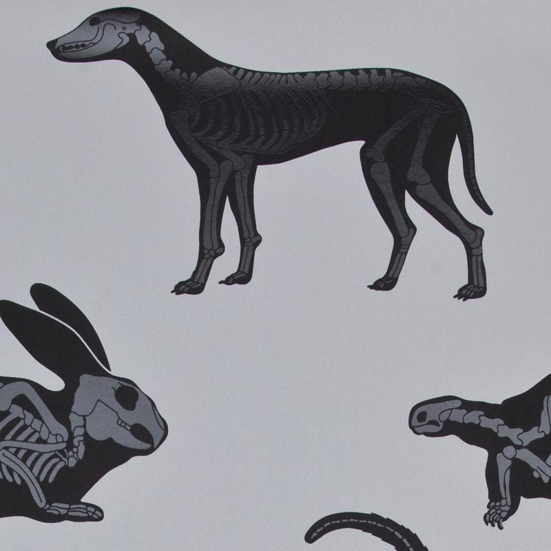 PaperBoy 'Animal Magic' Gray & Black Kids Wallpaper