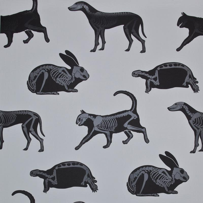 PaperBoy Wallpaper 'Animal Magic' Gray & Black Kids Wallpaper