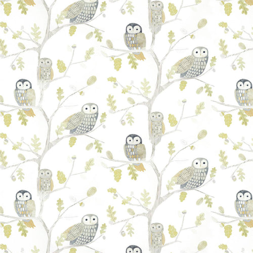 Little Owls Wallpaper 112627