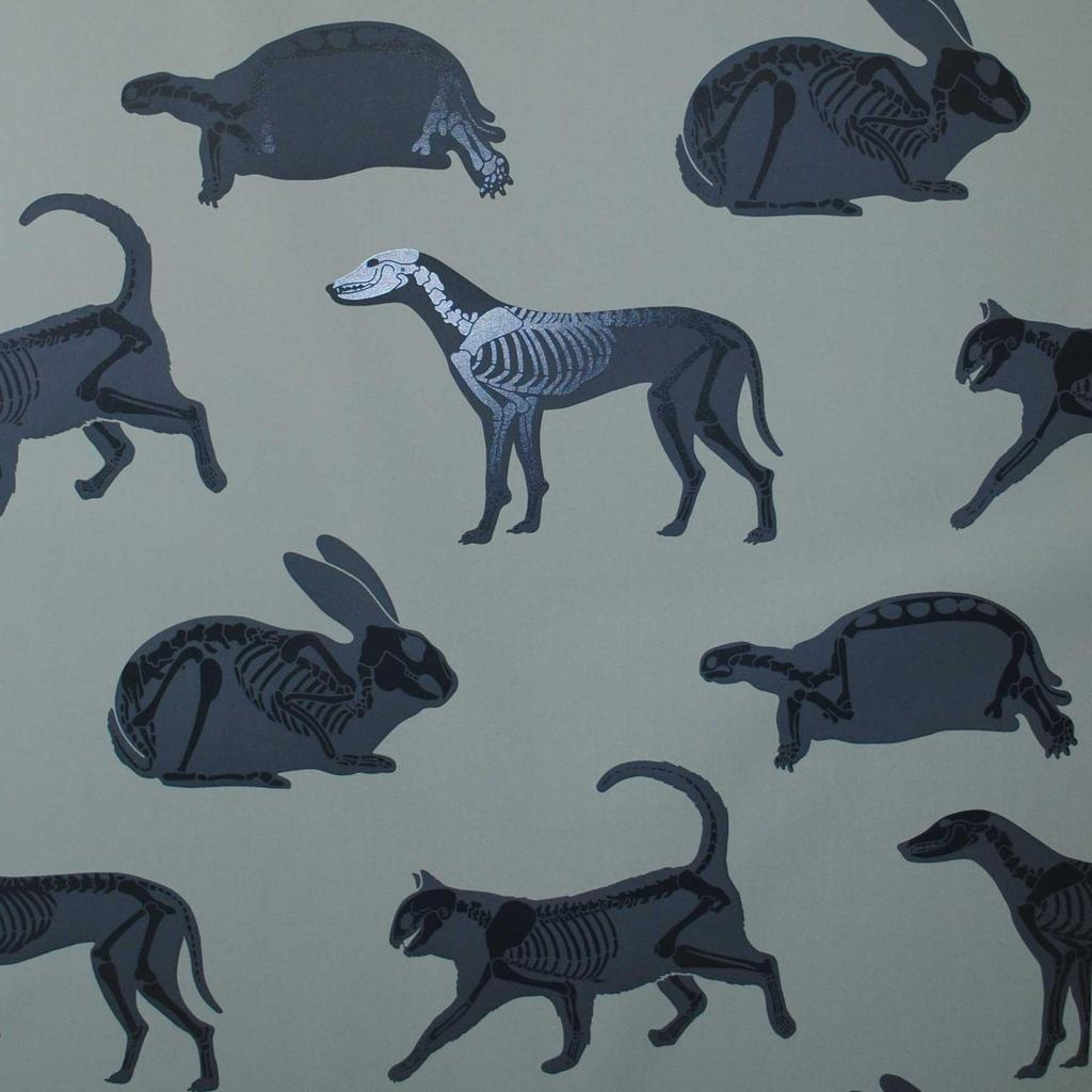 PaperBoy 'Animal Magic' Blue children's wallpaper