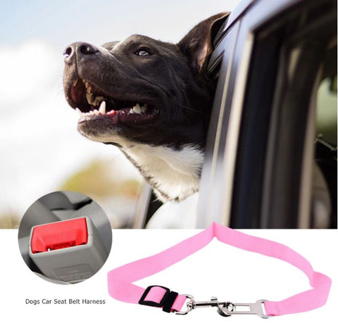 dog seatbelt for saftey small medium large dogs