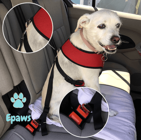 Epaws Dog Car Seat belt Harness tether Seatbelt dog seat belt tether pet seat belt