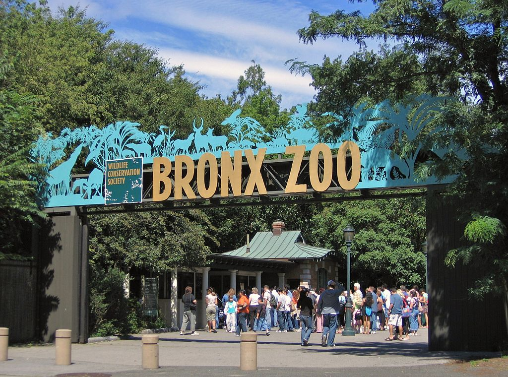 Rally for Happy's Freedom from the Bronx Zoo - Saturday 6/1 from 1-3 PM
