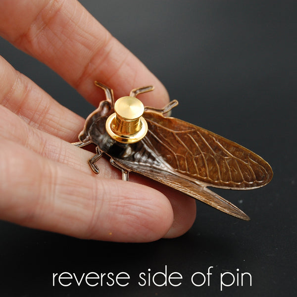 Brass Cicada Insect Pin or Brooch