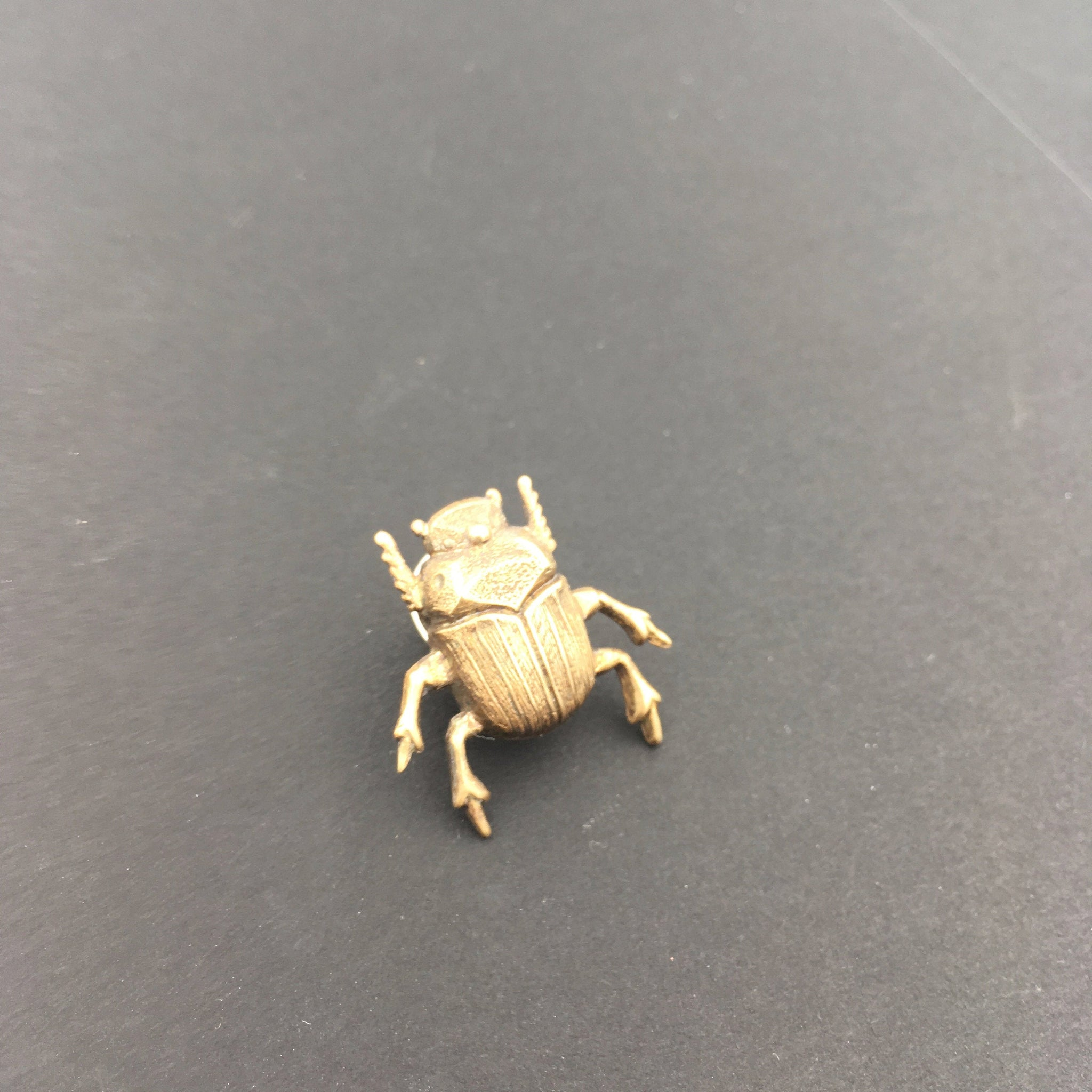 Brass Scarab Beetle Insect Brooch or Pin