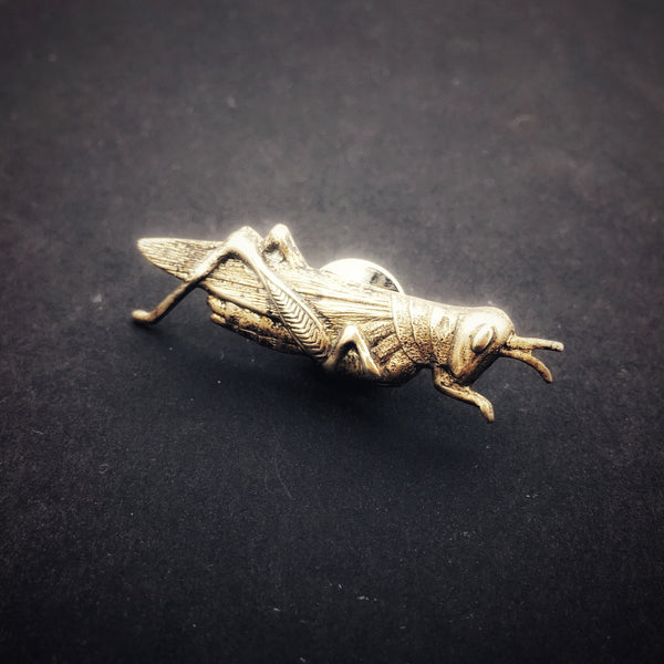 Brass Grasshopper or Cricket Insect Pin or Brooch