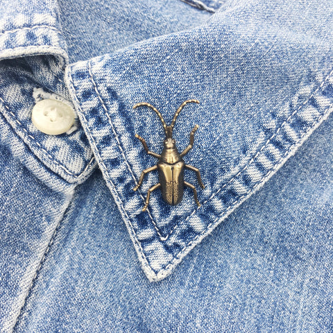 Brass Long Horned Beetle Insect Pin or Brooch