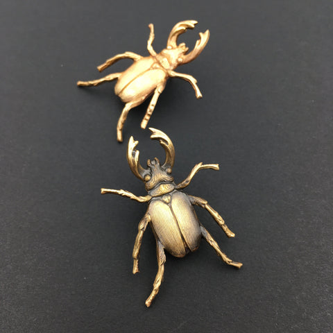 Brass Stag Beetle Insect Pin or Brooch