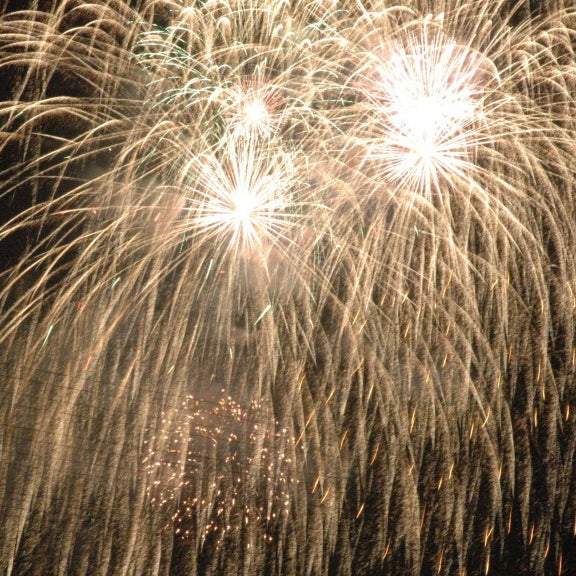Peterborough Arts Festival and Fireworks
