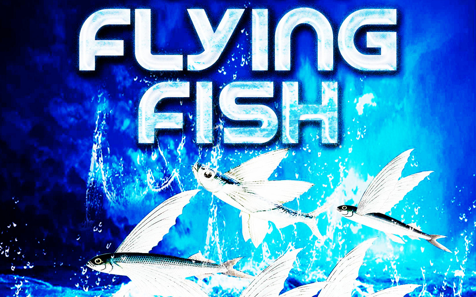 Fireworks Effects - Flying Fish / Bees