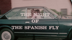 The Night Bird / Night of the Spanish Fly