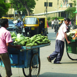 Challenges of Urbanisation: Inequalities in Bangalore