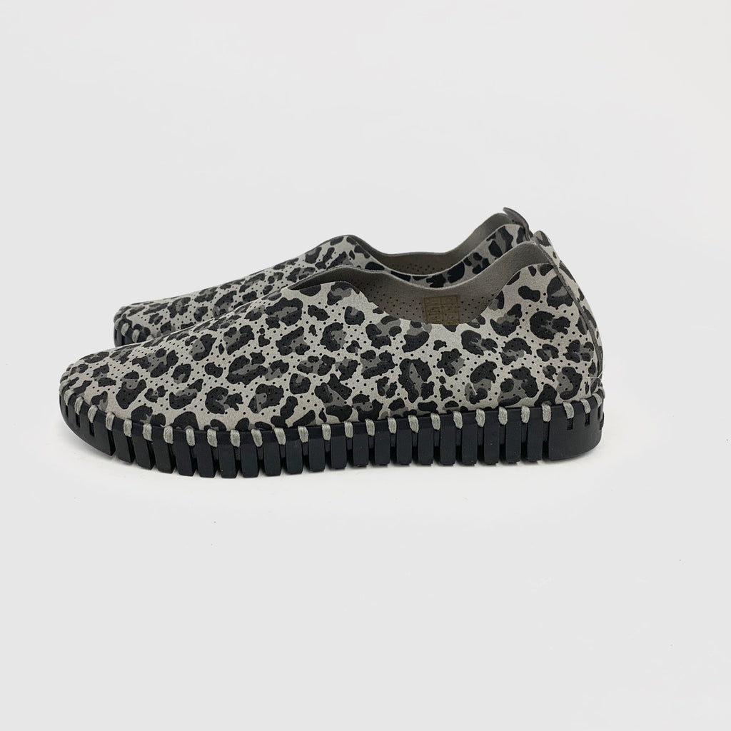 Ilse Jacobson - Tulip (Grey Cheetah/Black Sole)