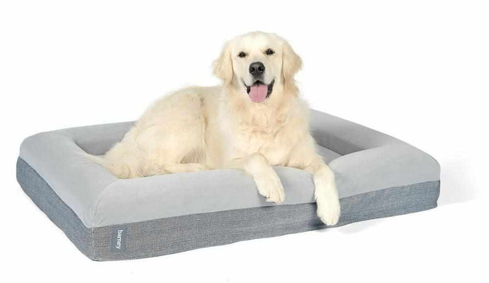 Large Barney Bed (L) Dog Bed Barney Bed