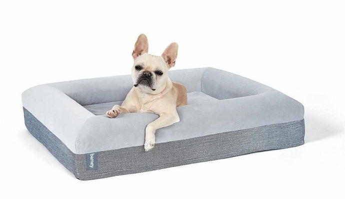 Medium Barney Bed (M) Dog Bed Barney Bed