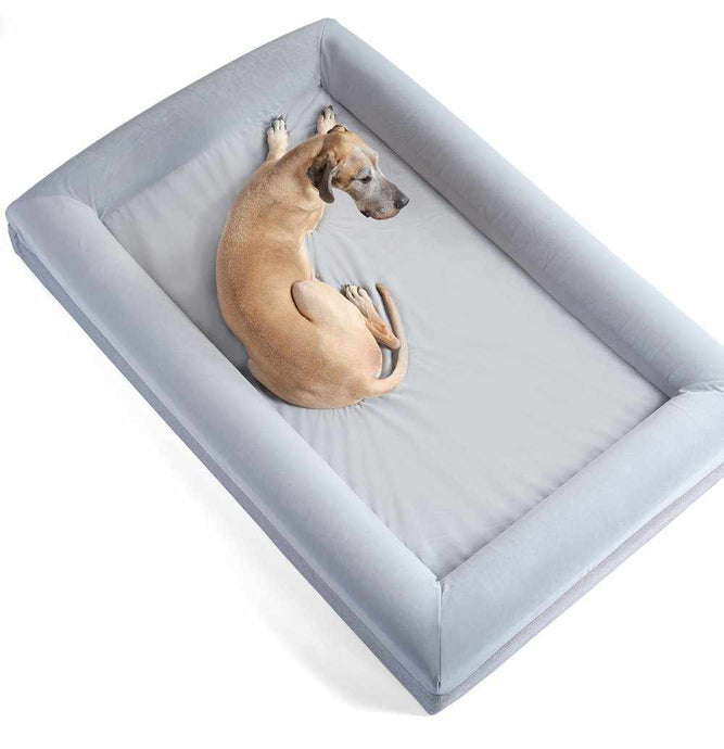 EPIC Barney Bed (XXL) Dog Bed Barney Bed