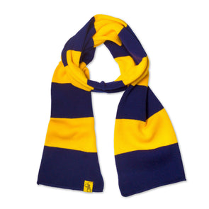 Striped Knit Scarf (Navy & Gold)