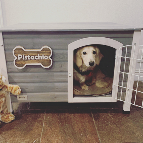 Small Rustic Dog Name Sign | Bone Shaped | Pet Name Sign