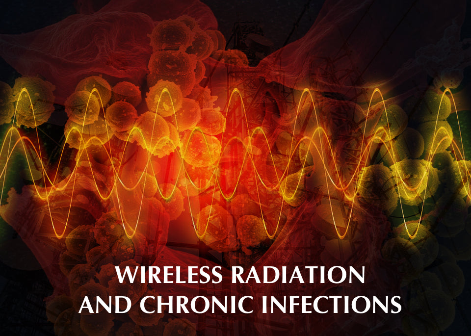 Wireless radiation perpetuates chronic infections? - Shielded Healing
