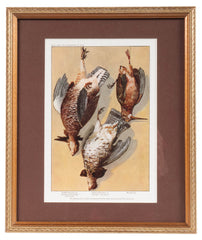 Print of Hanging Game Birds in Primitive Frame