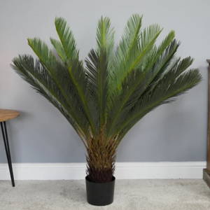 Artificial Cycad Plant - South Planks, Barton, Reclaimed Wood, Home Interiors, Cafe