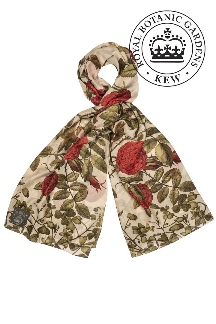 One Hundred Stars & Kew Rosebush Red Scarf