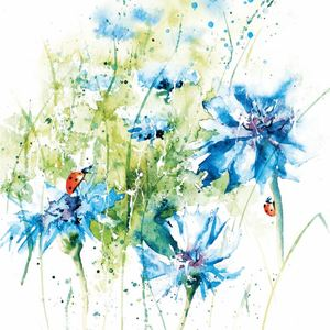 Cornflowers - Rachel Toll Cards