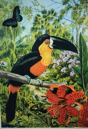 Toucan - Diana Wilson Hand Glittered Vintage Card