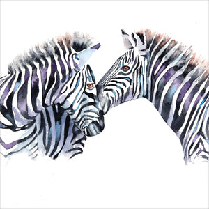 Zebras - Rachel Toll Cards