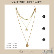 Afbeelding in Gallery-weergave laden, The Beautiful Leopard Ketting Goud