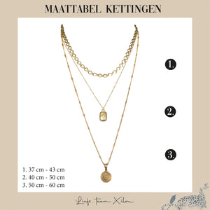 The Beautiful Leopard Ketting Goud