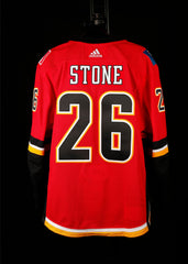 18-19 Game Worn Jersey Stone Home Set 1