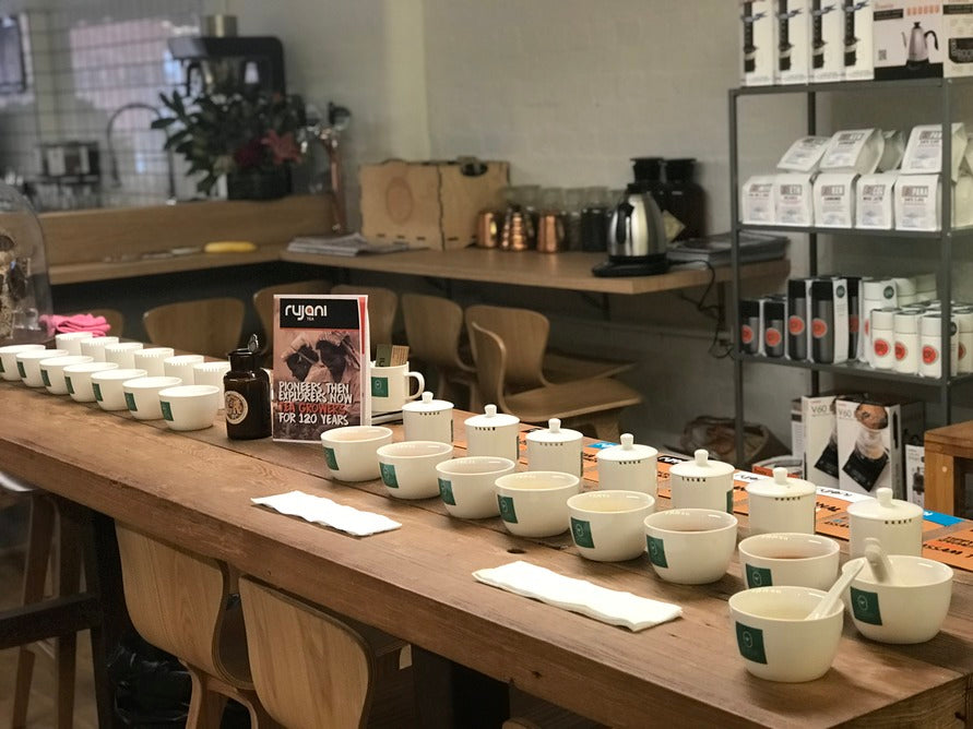 Rujani Tea Cupping Session Hosted by Cartel Coffee Roasters, Melbourne